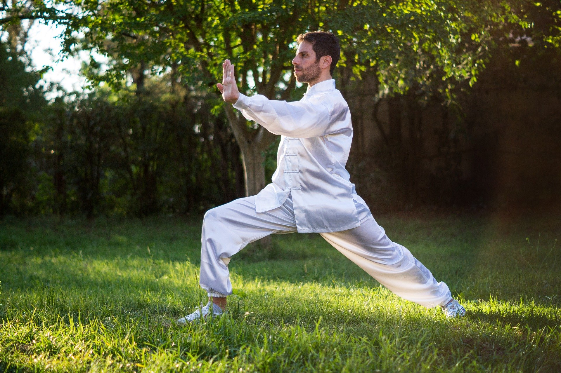 tai-chi-training