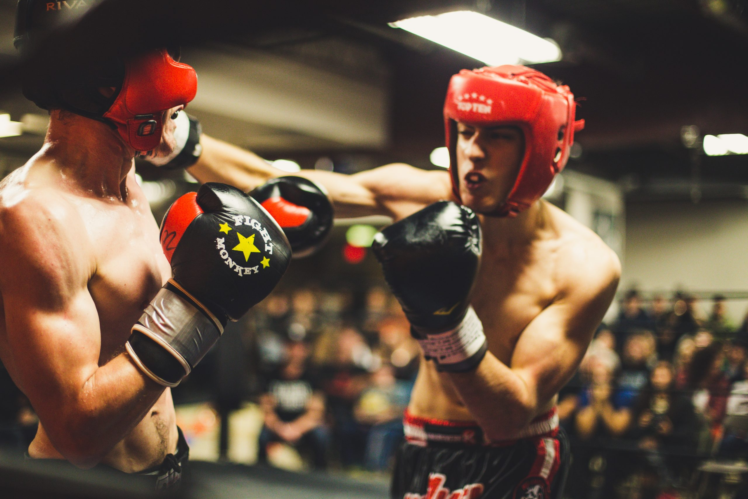 MMA Or Boxing? Which One Is Better For You?