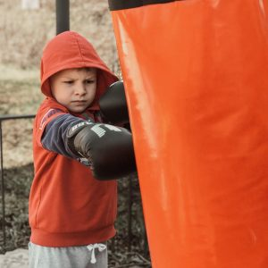 Top 4 Best Punching Bag for Kids