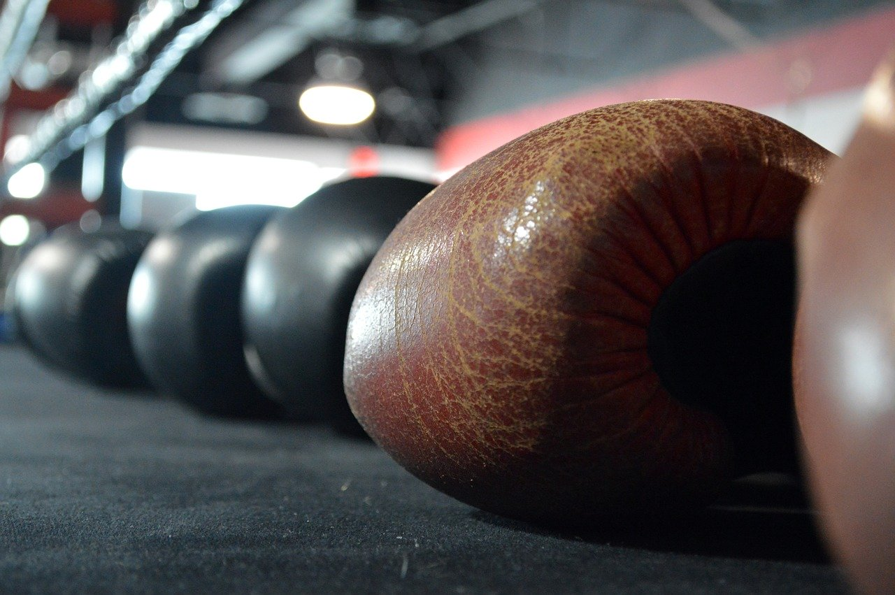 Top 14 Best Boxing Gloves [Reviewed]
